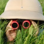 Binoculars-in-grass_300x190