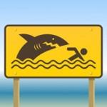 Beware-of-Sharks-300x190