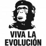Evolution-300x190